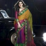 Zarine Khan Latest Women Saree Designs 2013-1