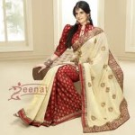Zarine Khan Latest Women Saree Designs 2013-11