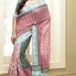 Zarine Khan Latest Women Saree Designs 2013-12