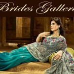 Zarine Khan Latest Women Saree Designs 2013-14