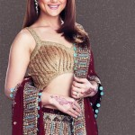 Bollywood Celebrity Preity Zinta Saree Fashion