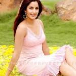 Katrina Kaif and Saif pair in Kabir Khan's next-12