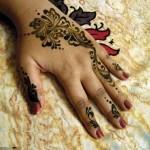 Stylish Pakistani and Arabic Mehndi Designs 2013-5