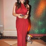 In Bombay Velvet Hot Raveena Tondon to play sizzling jazz singer