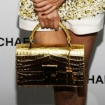 Latest Celebrity Hand Bags-Purse fashion Trends 2013-1