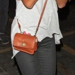 Latest Celebrity Hand Bags-Purse fashion Trends 2013-2
