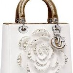 Latest Extensive stylish purses and handbags For Girls-8