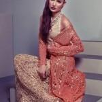 Eid Ul Azha For Women Collection 2014 by Delphi-7