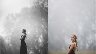 Tips to take better Fog Photographs